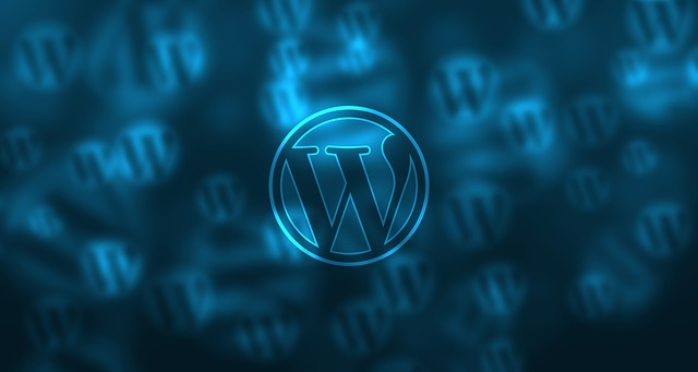 How many plugins should be used on WordPress site?onedayhit
